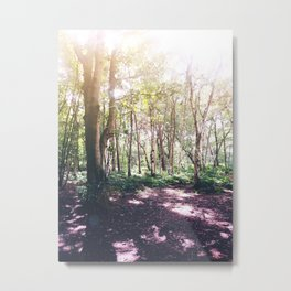 Forest Glare Metal Print