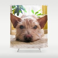 custom Shower Curtains featuring Custom Order by Canis Picta