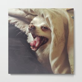 Doggy Says Hello Metal Print