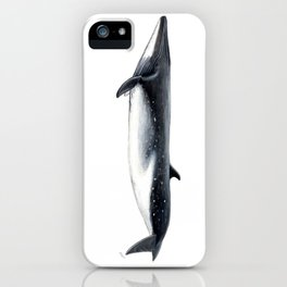 Bryde´s whale iPhone Case