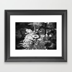 Butterfly on Flower Framed Art Print