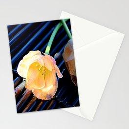 A Spot Of Sun Stationery Cards