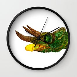 The Chameleon Wall Clock