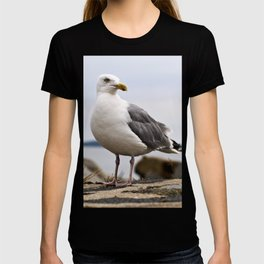 Beautiful Seagull of the Baltic T-shirt