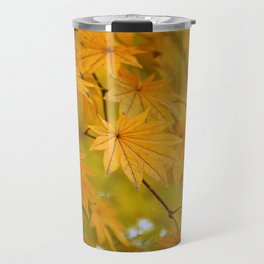 Colorful Japanese Maple In Fall Photography Travel Mug