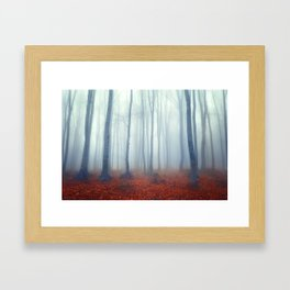 Foggy day in the forest Framed Art Print