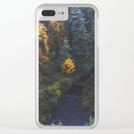 Waterfall Lookout Clear iPhone Case