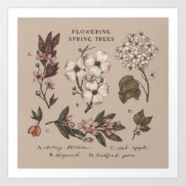 Flowering Spring Trees Art Print