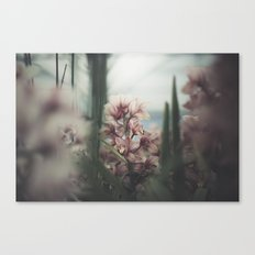 gods of gently Canvas Print