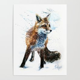 Fox watercolor Poster