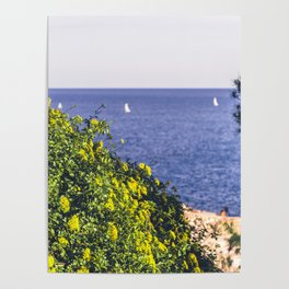 Yellow flowers on the seacoast of Cap Martin in a sunny winter day Poster