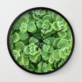 Cerveza and Lime Wall Clock