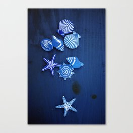 The Blue Life Canvas Print