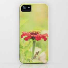 Red Flower on a Summer Morning iPhone Case