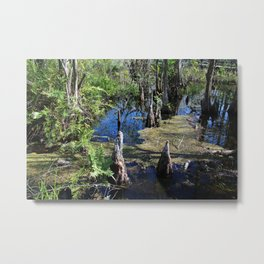 Standing in the Slough Metal Print