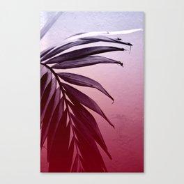 Tropic 4 Canvas Print