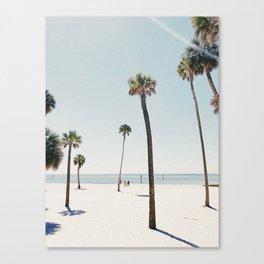 Summer Palm Trees Canvas Print