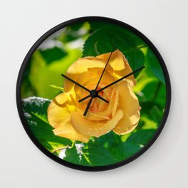 Gold rose Wall Clock