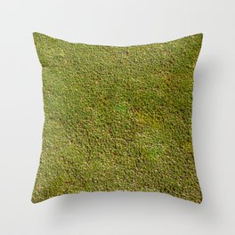 Green and yellow moss plant texture background Throw Pillow