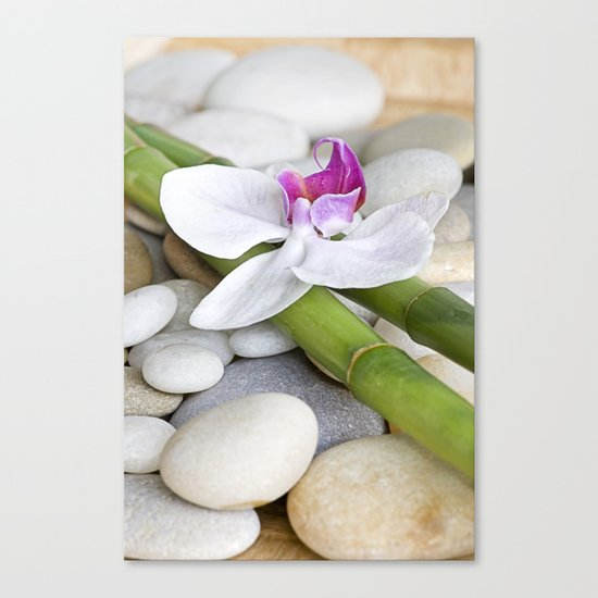 white Orchid flower  and green Bamboo still life Canvas Print
