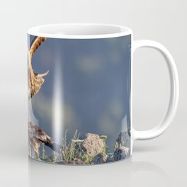 Black Kite vs young Egyptian Vulture Coffee Mug