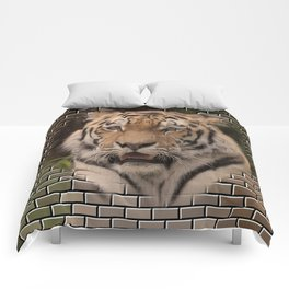 Animal on Bricks, TIGER Comforters