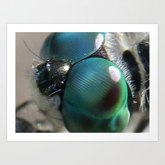dragonfly eyes Art Print
