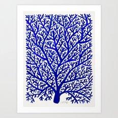 Fan Coral – Navy Art Print