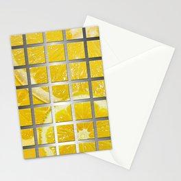 Lemon Slices & Square Grid Collage Metallic Stationery Cards