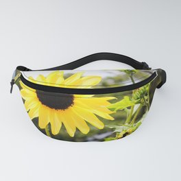 Sunflower With Buds Fanny Pack