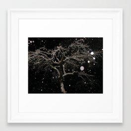 #406 bitterroot 406 bitterroot mt winter 12 14 Framed Art Print