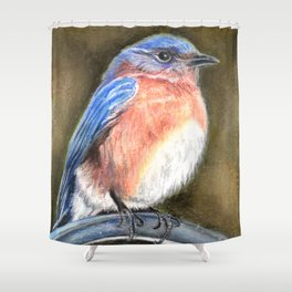 Bluebird Perched by Laurie Leigh Nature Art Shower Curtain