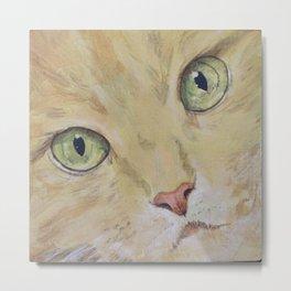 Yellow Cat Face Metal Print