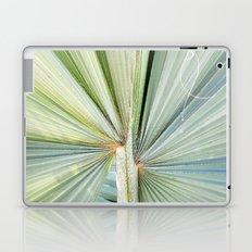 Fanned Palms Laptop & iPad Skin