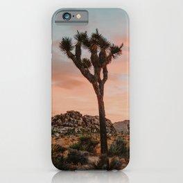 Joshua Tree IX / California Desert iPhone Case