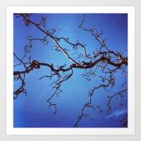 Curls of Blue Art Print