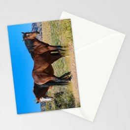 Wild_Horses 0163 - Nevada Stationery Cards