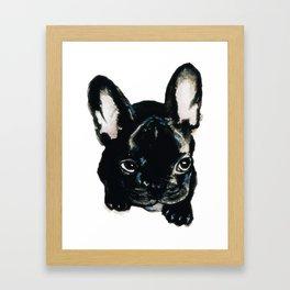 French Bulldog Puppy Framed Art Print