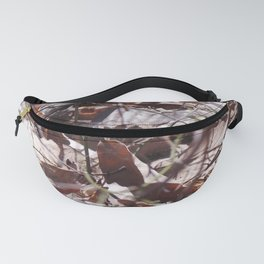 Decomp Fanny Pack