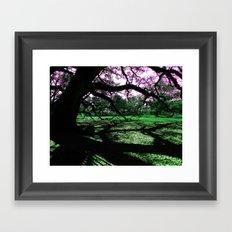 Green Oak Shadows Framed Art Print