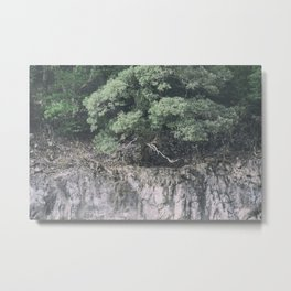Forest and rocks Metal Print