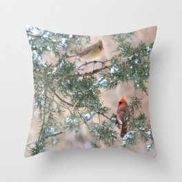 Winter Pair Cardinals (v) Throw Pillow