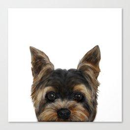 Yorkshire Terrier Mix colorDog illustration original painting print Canvas Print