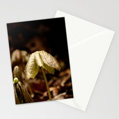 Natures Little Umbrella  Stationery Cards