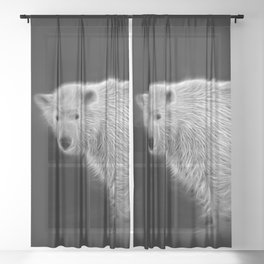 Polar Bear Cub Sheer Curtain