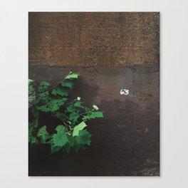 Richmond / 63 Canvas Print