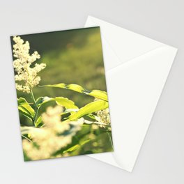 Sunlight flowers Stationery Cards