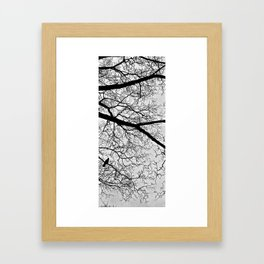 Natural Fractal and the Crow Framed Art Print