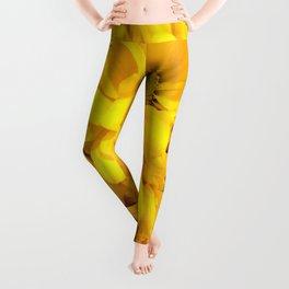 Yellow Daisies Leggings
