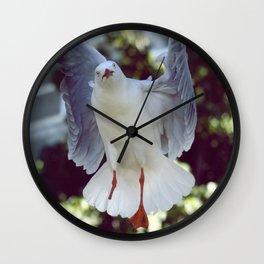 Peggy Gull Wall Clock